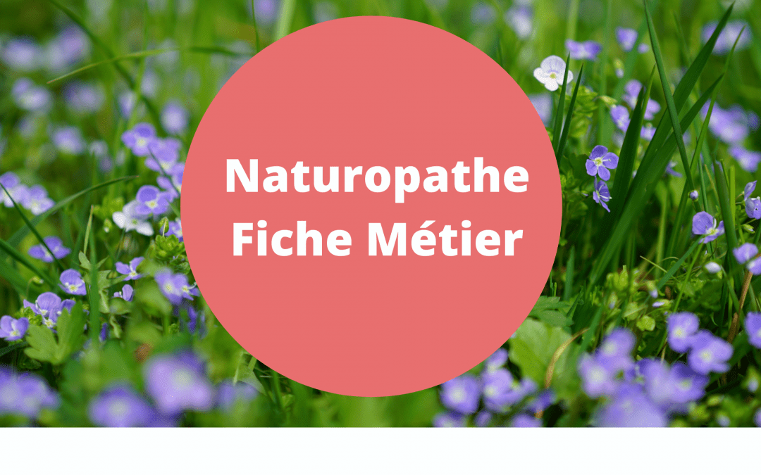 metier naturopathe